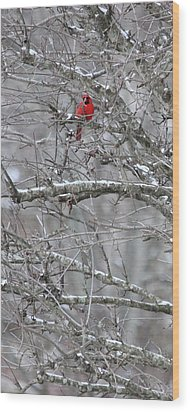 Wood Print featuring the photograph First Snow Fall by Kume Bryant