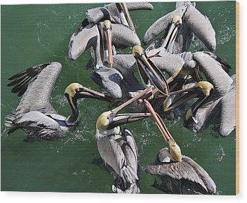 Fish Fight Wood Print by Paulette Thomas