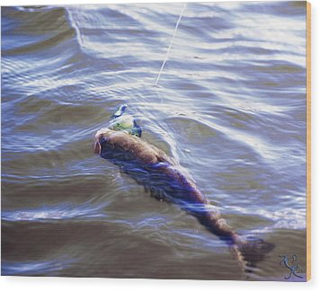 Fish In The Water Wood Print by Kelly Rader