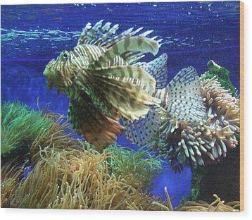 Fish Wood Print by King Ify