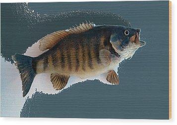 Fish Mount Set 10 B Wood Print by Thomas Woolworth