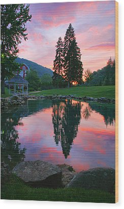 Fish Pond At Sunset I Wood Print by Steven Ainsworth