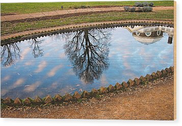 Fish Pond II Wood Print by Steven Ainsworth