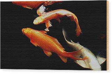 Fish Swimming Wood Print by Don Mann
