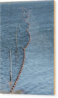 Fishing Nets Wood Print
