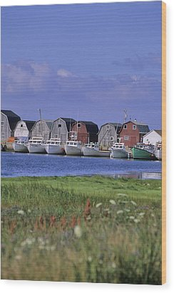 Fishing Shacks Line The Bay At Malpeque Wood Print by Leanna Rathkelly