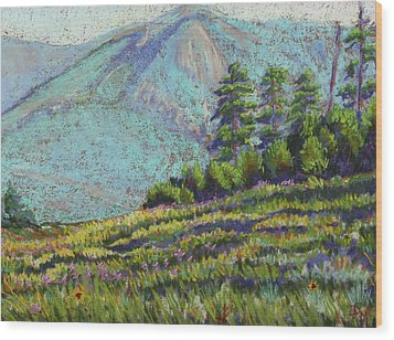 Flagstaff Meadow Wood Print by Drusilla Montemayor