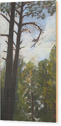 Flagstaff Pines Wood Print by Drusilla Montemayor