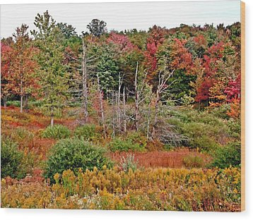 Wood Print featuring the photograph Flaming Meadow by Christian Mattison