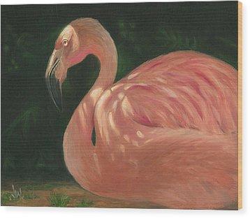 Flamingo In Dappled Light Wood Print by Joe Winkler