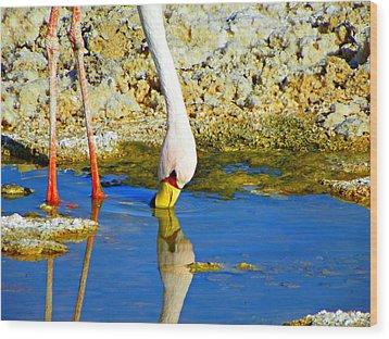 Flamingos In The Atacama Desert Wood Print
