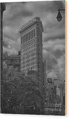 Wood Print featuring the photograph Flatiron by Vicki DeVico