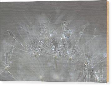 Wood Print featuring the photograph Fleur Cristalline by Sylvie Leandre