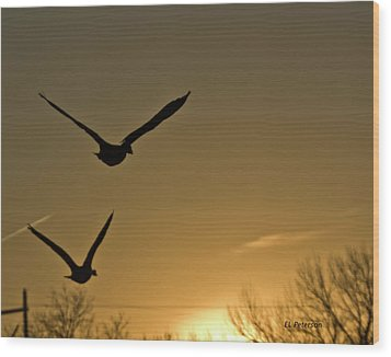Wood Print featuring the photograph Flight At Sunset by Edward Peterson