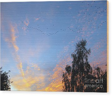 Flight Into The Sunset Wood Print by Ausra Huntington nee Paulauskaite
