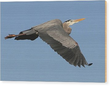 Wood Print featuring the photograph Flight Of The Great Blue Heron by Myrna Bradshaw
