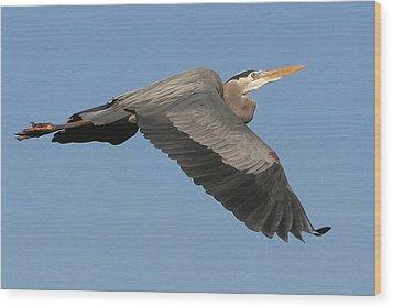 Flight Of The Great Blue Heron Wood Print by Myrna Bradshaw