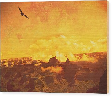 Flight Over Grand Canyon Wood Print by James Bethanis