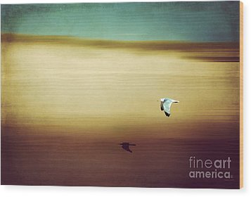 Flight Over The Beach Wood Print by Hannes Cmarits