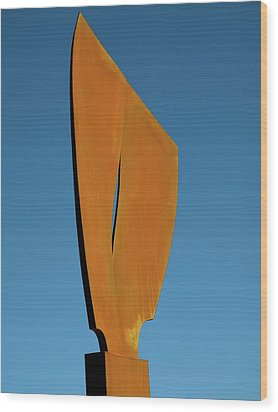 Flight-second Image Wood Print by Robert Hartl