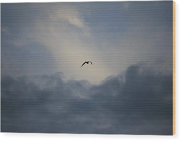 Wood Print featuring the photograph Flight To Heaven by Penny Meyers