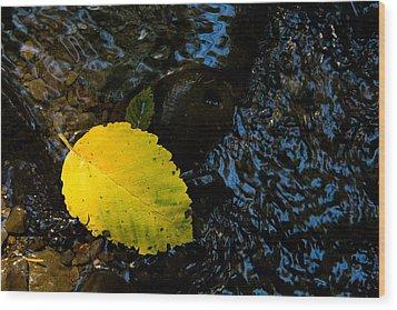 Floating Down The River Wood Print by Sheri Van Wert