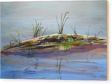 Floating Log Wood Print by Ramona Kraemer-Dobson