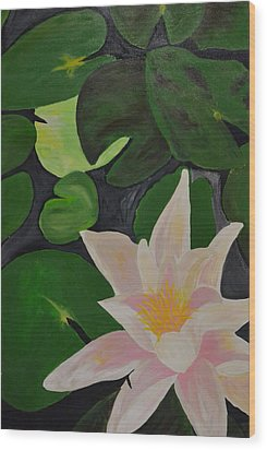 Floating Lotus 2 Wood Print by Holly Donohoe