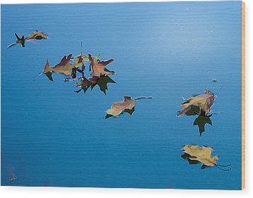 Floating On The Sky Wood Print by Michael Flood