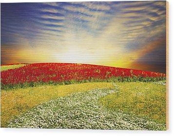 Floral Field On Sunset Wood Print by Setsiri Silapasuwanchai