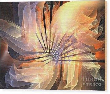 Floral Supernova Wood Print by Kim Sy Ok