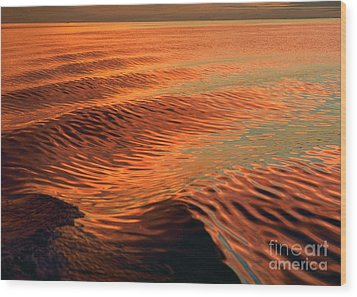 Wood Print featuring the photograph Florida Bay by Doug Herr