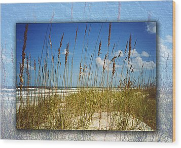Perfect Day At A Florida Beach Wood Print by Barbara Middleton