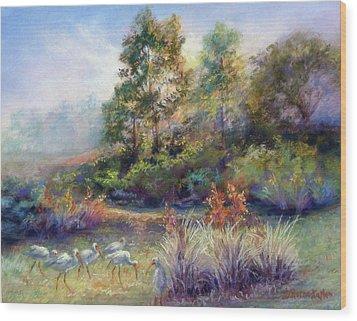 Florida Ibis Landscape Wood Print by Denise Horne-Kaplan