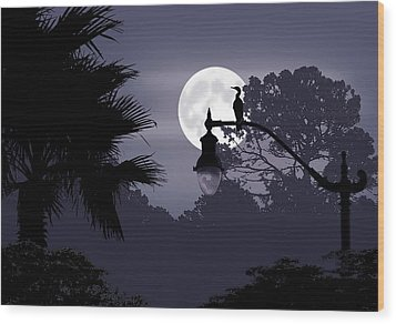 Florida Moonlight Wood Print by Ginny Schmidt