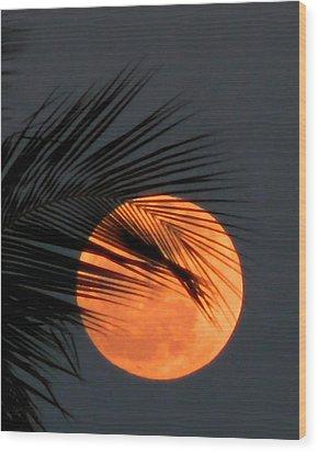 Florida Moonrise Wood Print by Peg Urban