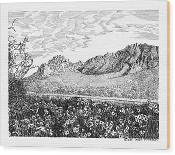 Florida Mountains And Poppies Wood Print by Jack Pumphrey