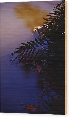 Florida Sunset 2 Wood Print