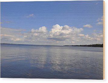 Wood Print featuring the photograph Floridian View by Sarah McKoy