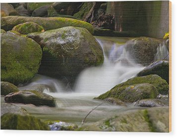 Flow Wood Print by Cindy Haggerty