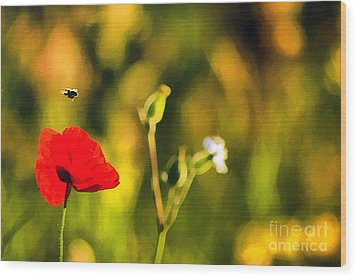 Flower And Bee Wood Print by Odon Czintos