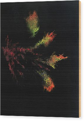Flower Darkness Wood Print by Colin Young