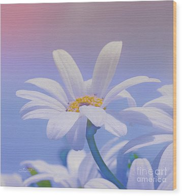 Flower For You Wood Print by Jutta Maria Pusl