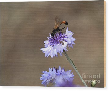 Wood Print featuring the photograph Flower Meal by Tamera James