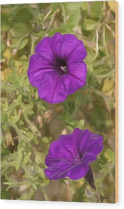 Flower Painting 0006 Wood Print by Metro DC Photography