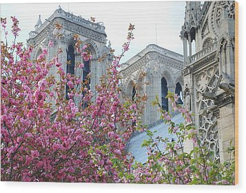 Wood Print featuring the photograph Flowering Notre Dame by Jennifer Ancker