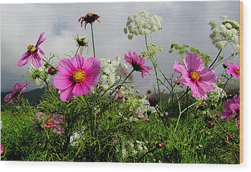Wood Print featuring the photograph Flowers by Barbara Walsh