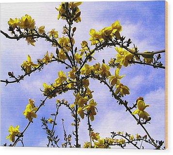 Flowers Cascade Wood Print by Guadalupe Nicole Barrionuevo