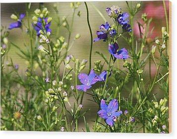 Flowers Of Summer Wood Print by Robin Regan