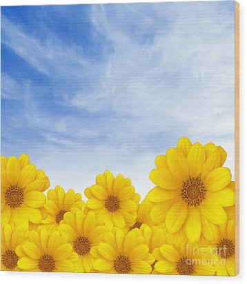 Flowers Over Sky Wood Print by Carlos Caetano